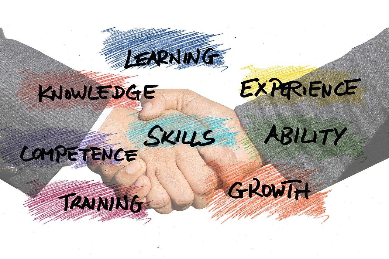 skills, can, startup-3368050.jpg